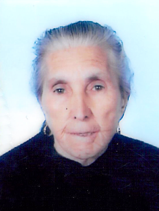 Margarida Vaz Pires