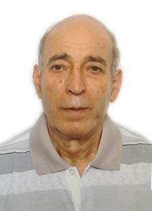 António Borrego Domingues António