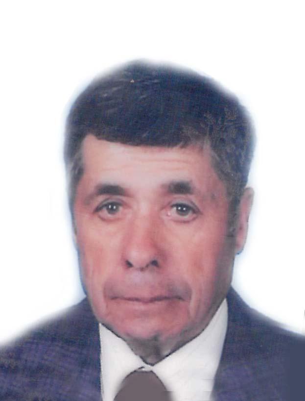 josé Manuel Gonçalves Ladeira
